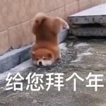 懵逼的小龙虾_